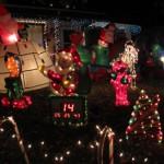 Petaluma Holiday Lights Tour